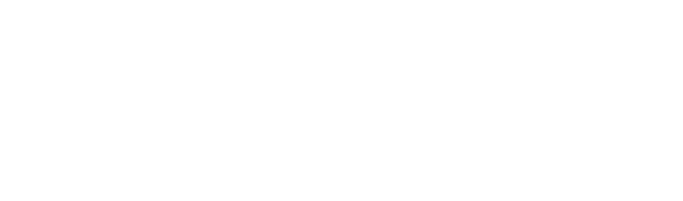 Business Jet Access